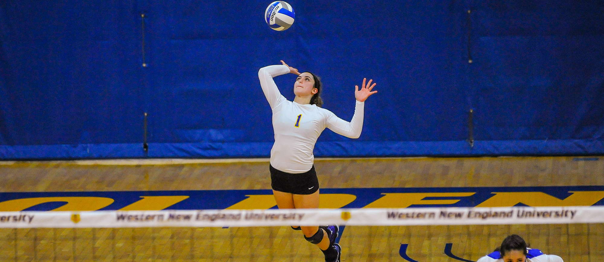 Western New England Rolls to 3-0 Victories over Framingham State & Colby Sawyer