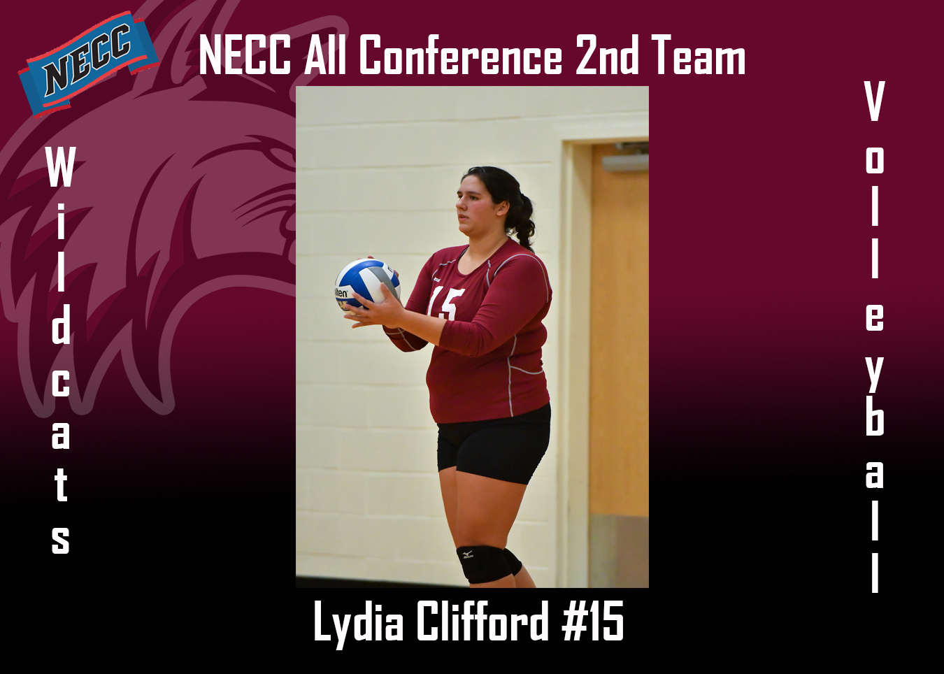 Clifford named to the 2018 NECC All-Conference 2nd Team
