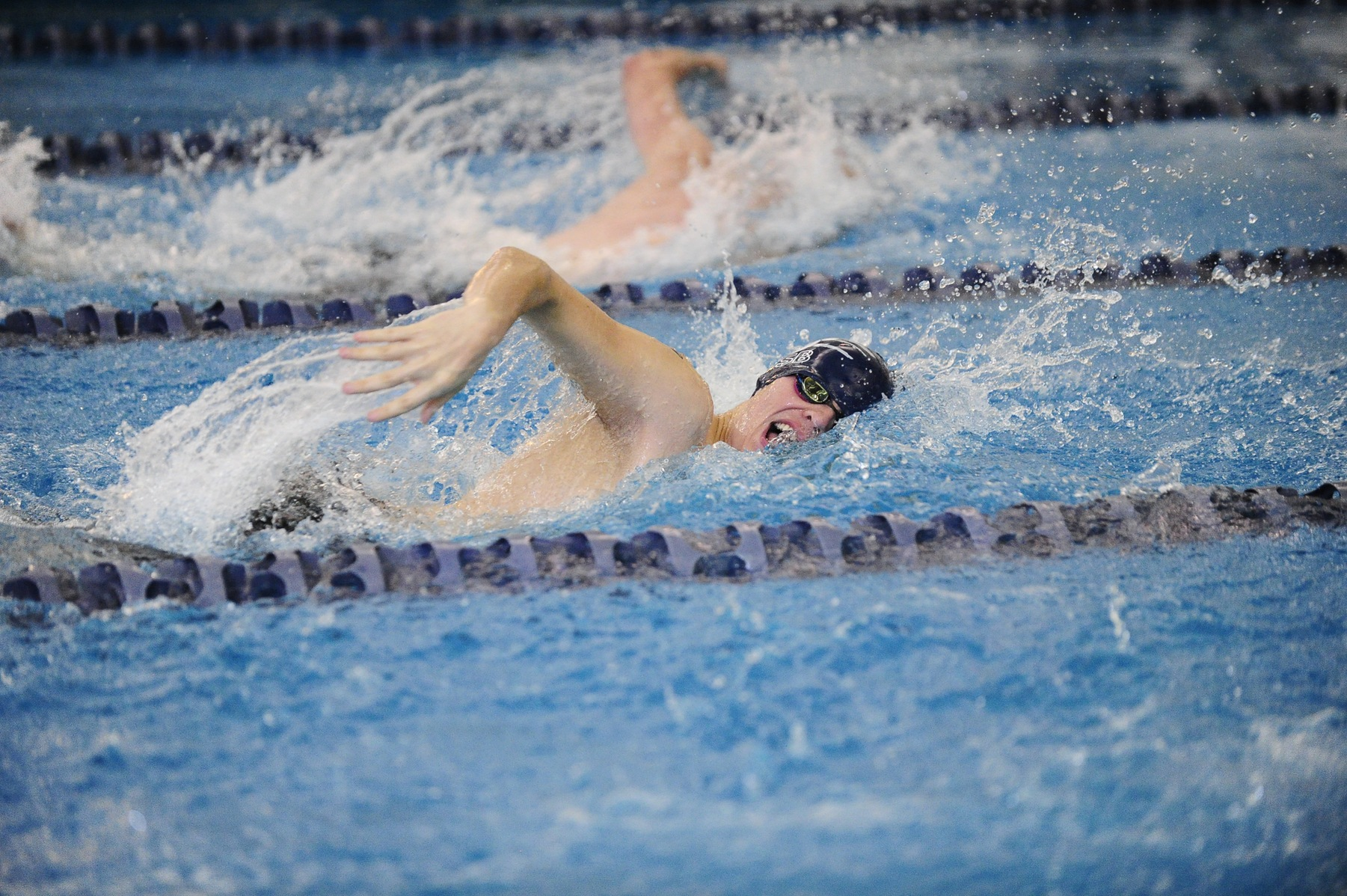 Men's Swimming and Diving Downs Alfred State