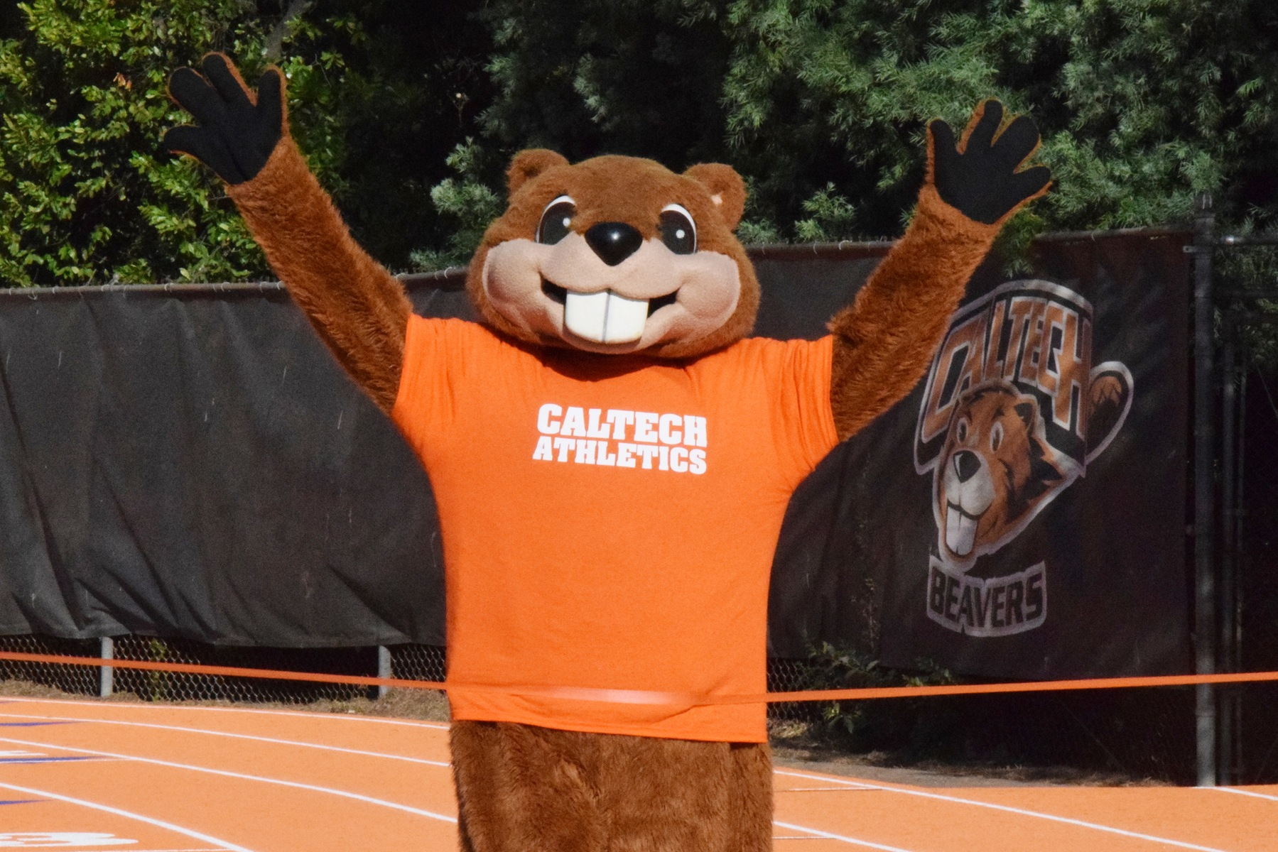 Caltech Features 175 on 2018-19 SCIAC All-Academic Team