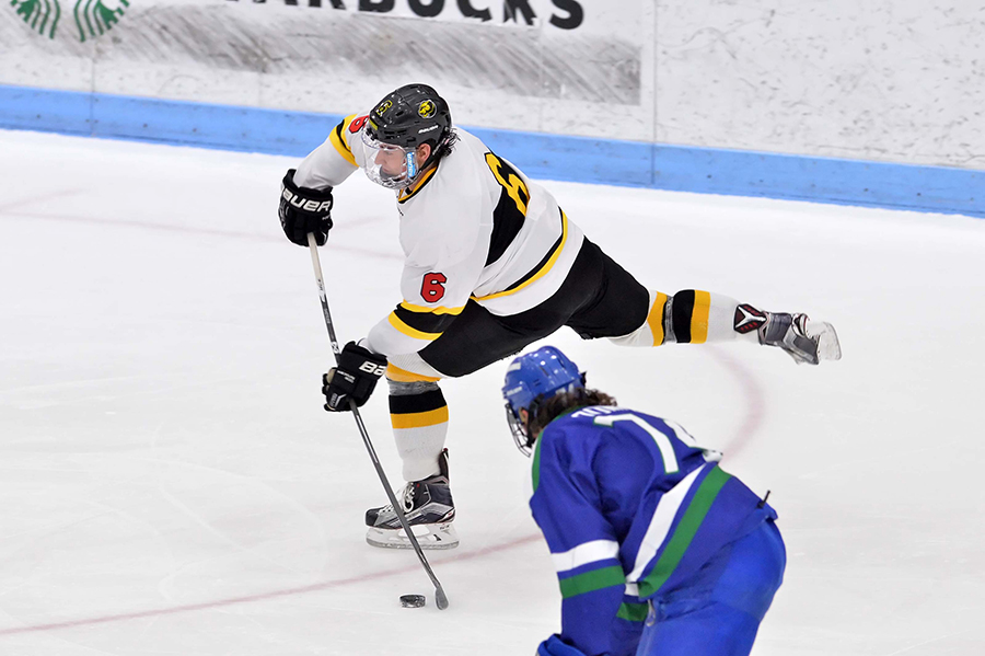 Western New England Slips Past Hockey
