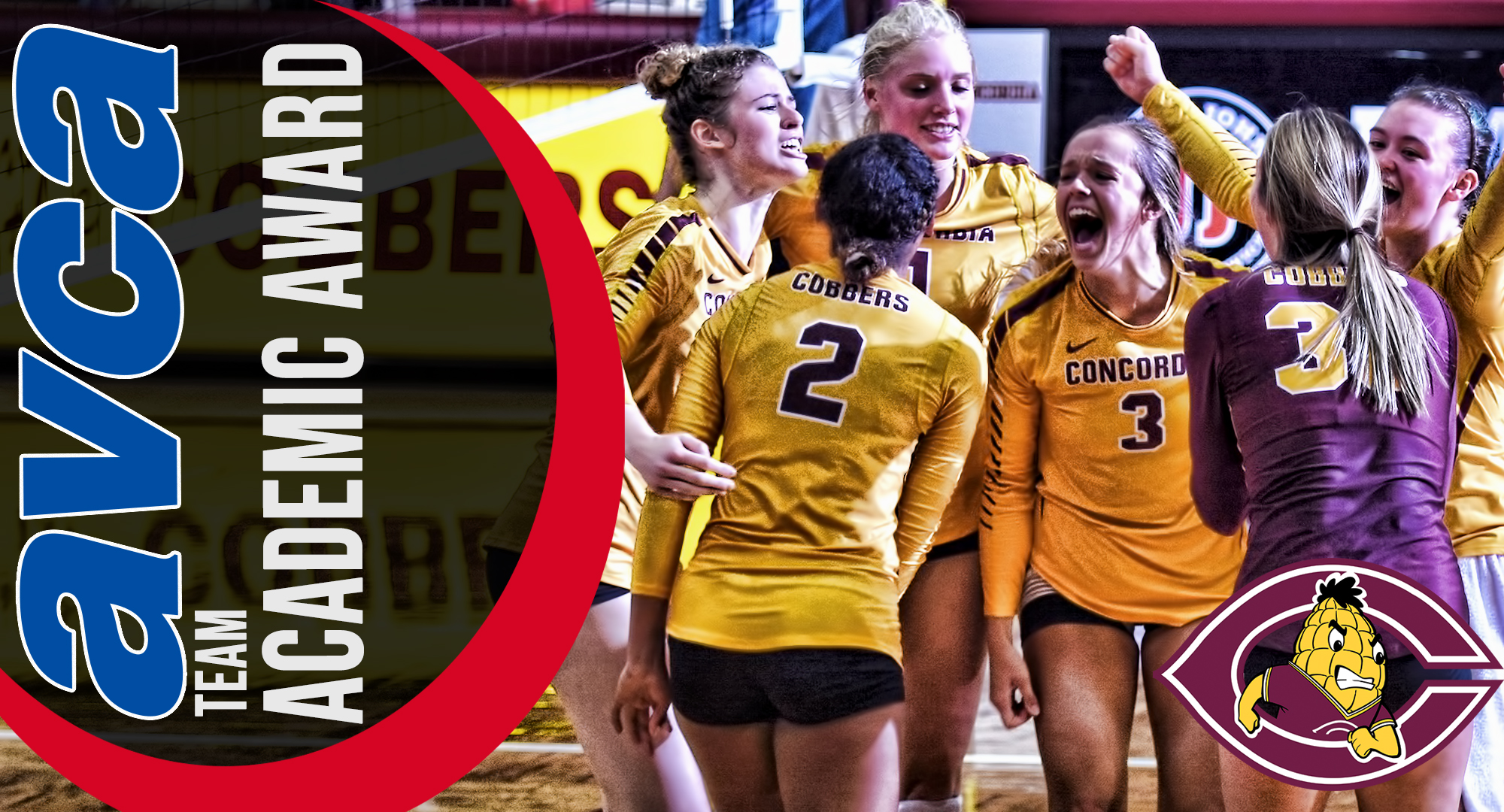 Concordia earned USMC/AVCA Team Academic honors for the first time in program history.