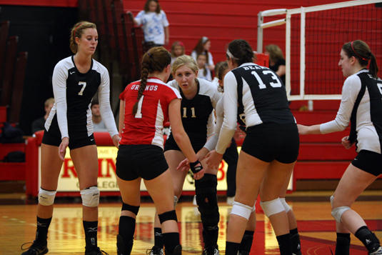 Volleyball downed by Washington, 3-0