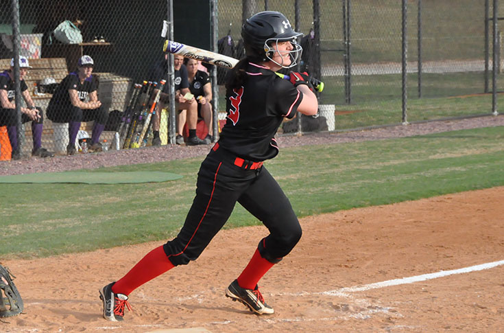 Softball: Panthers split USA South doubleheader against Methodist
