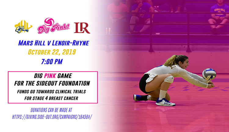 Lions to host annual Dig Pink game Tuesday versus Lenoir-Rhyne