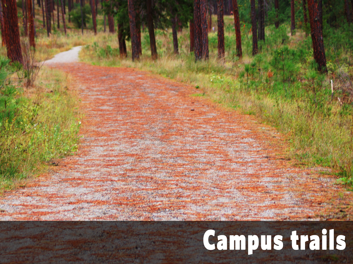 Campus trails