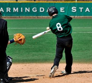 Bats Lead the Way for Farmingdale State