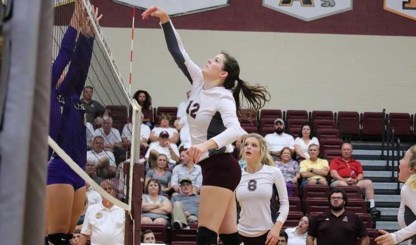 Volleyball Sweeps Albion on the Road