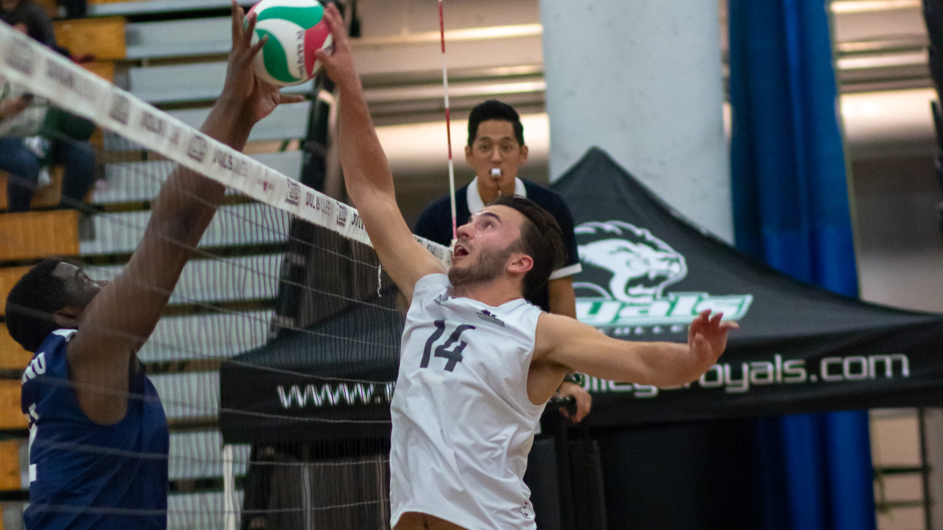 5th year veteran, Jared Collin fights for the kill against Capilano
