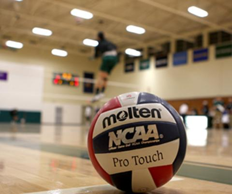 Sage's volleyball action postponed for Saturday