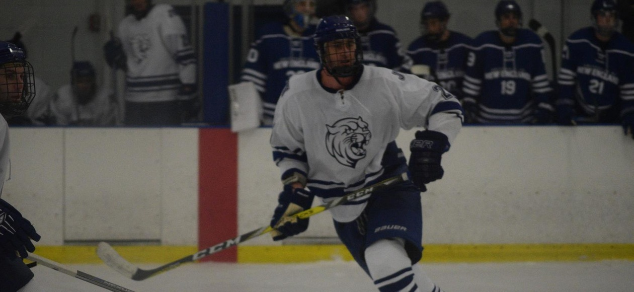 Men's Ice Hockey Drops 3-2 Overtime Decision at #6 Endicott