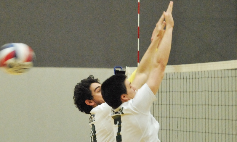 Lions blank Lynx in men's volleyball play, 3-0