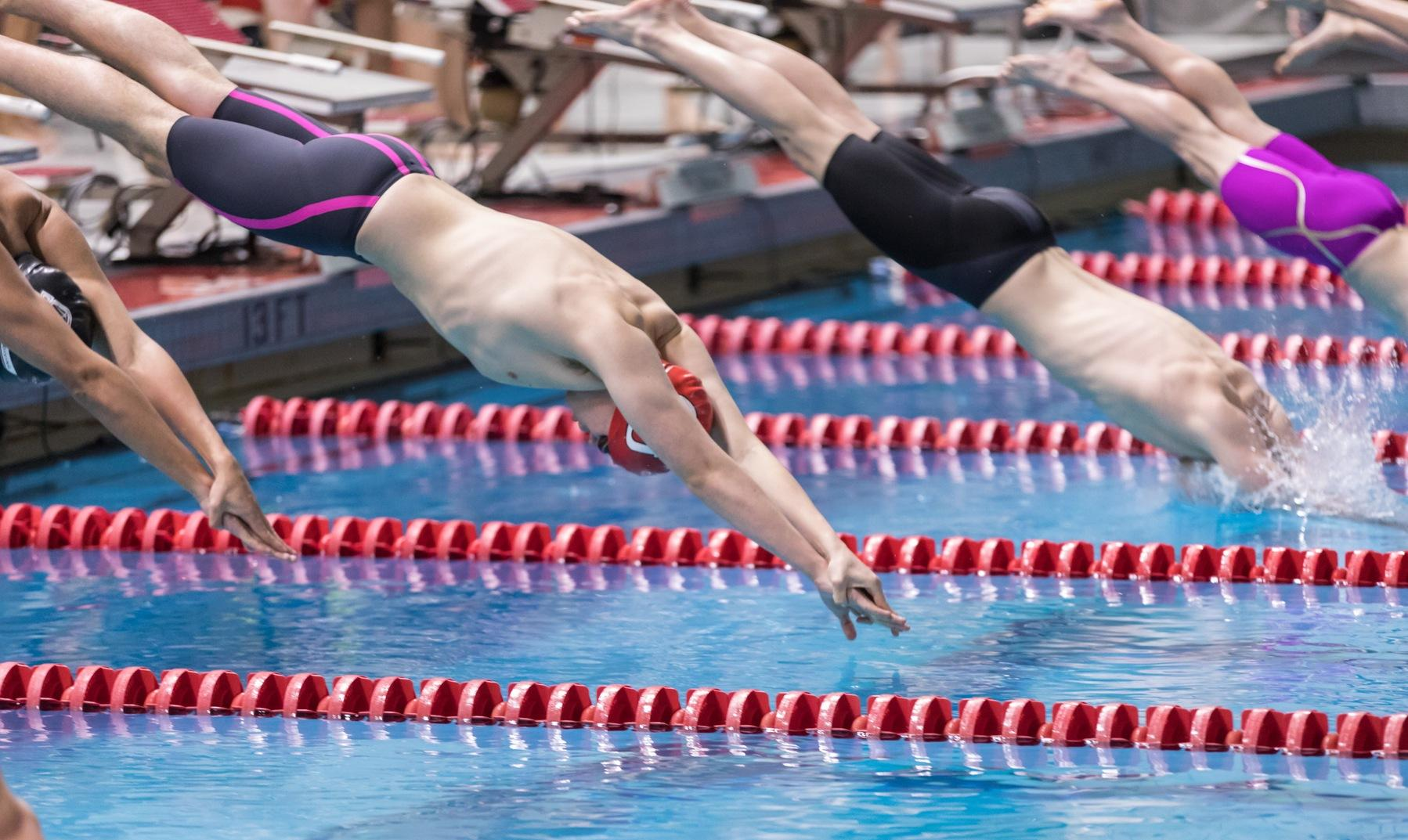Bears Climb to Victory Over Men's Swimming and Diving