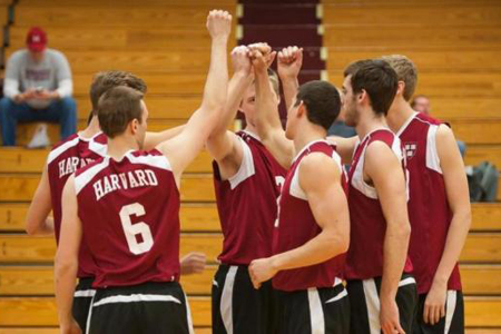 No. 14 Harvard Men's Volleyball Looks to Push Win Streak to Eight