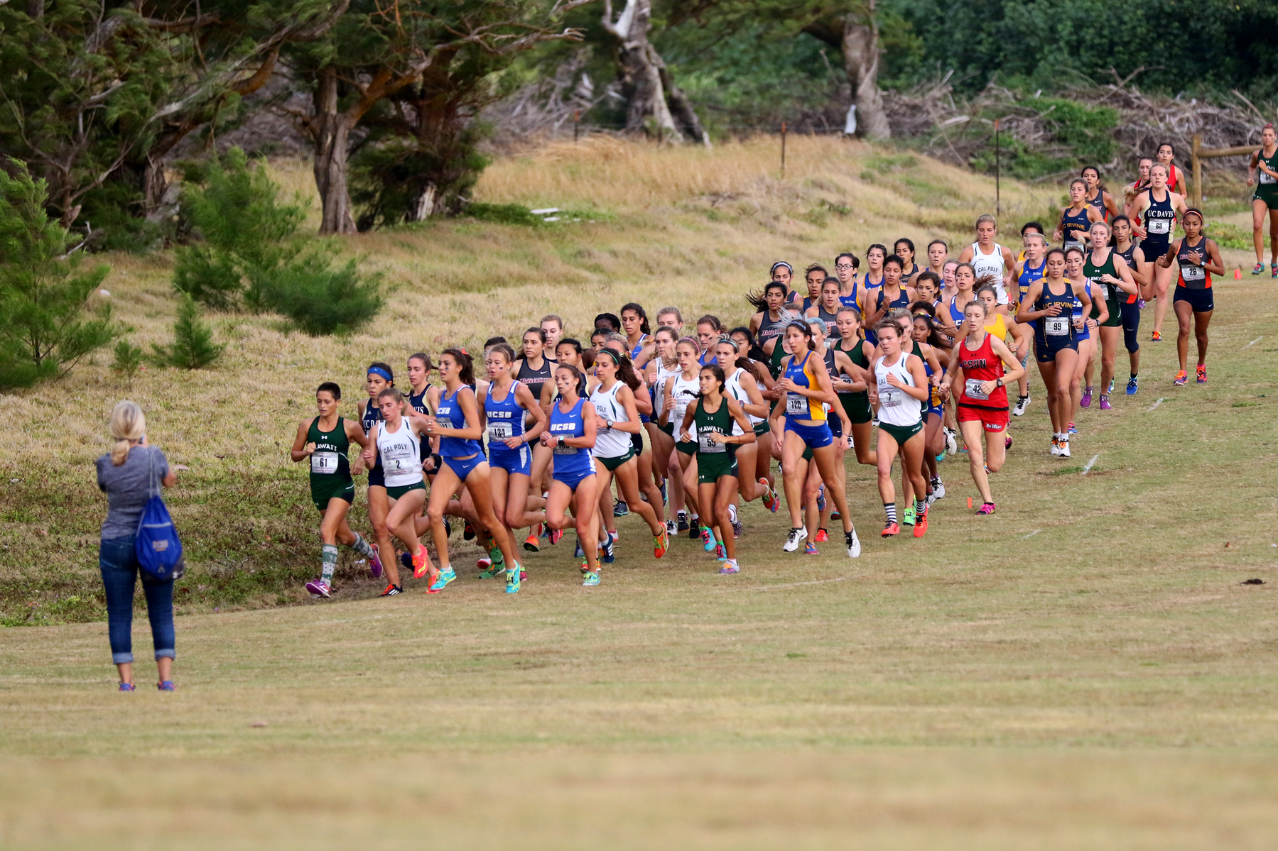 Cross Country Ready to Roll at NCAA West Regional