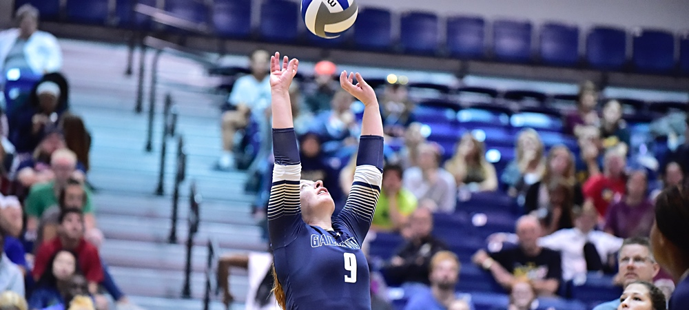 Gallaudet setter Jasmine Jeter looks to towards the ceiling and is setting a volleyball above her head. She is wearing a navy uniform. They are indoors in the Field House.