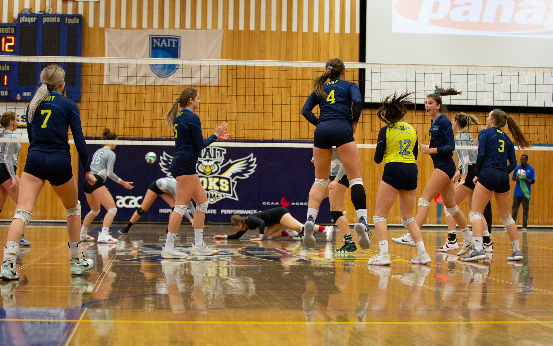 Ooks WVB Lose 3-0 To Eagles