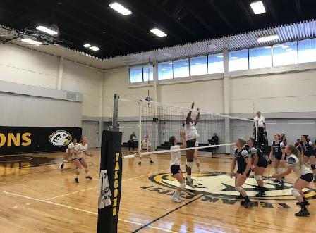 Women's Volleyball Splits in Tri-Match