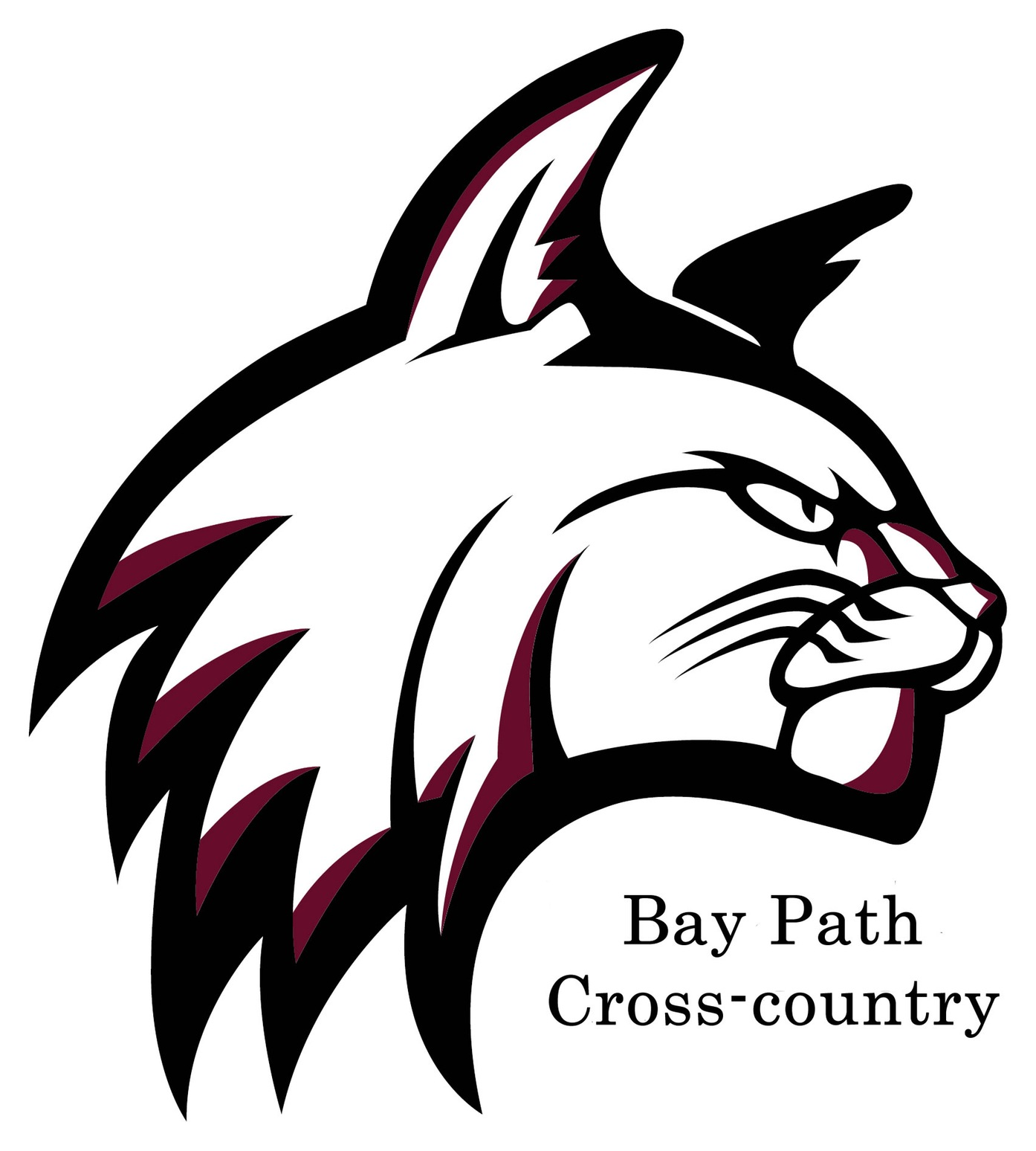 Doiron selected to lead the Bay Path University