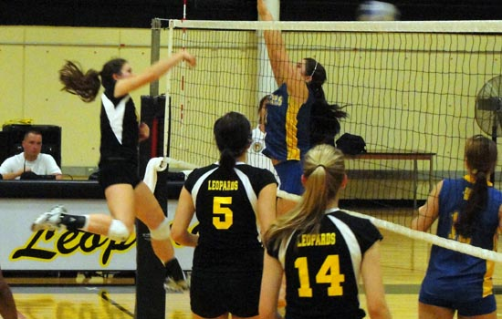 Women's Volleyball Records Pair of Wins