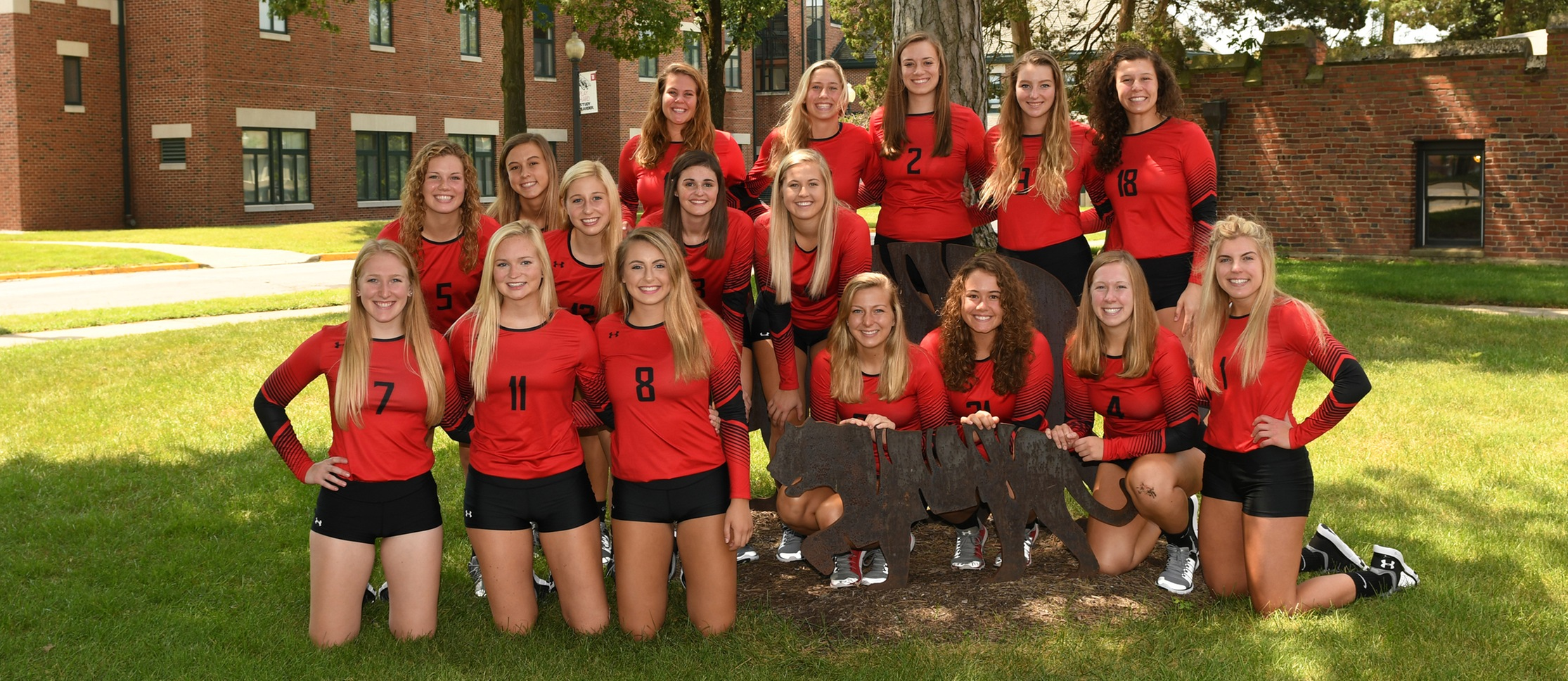 2017 Wittenberg Volleyball