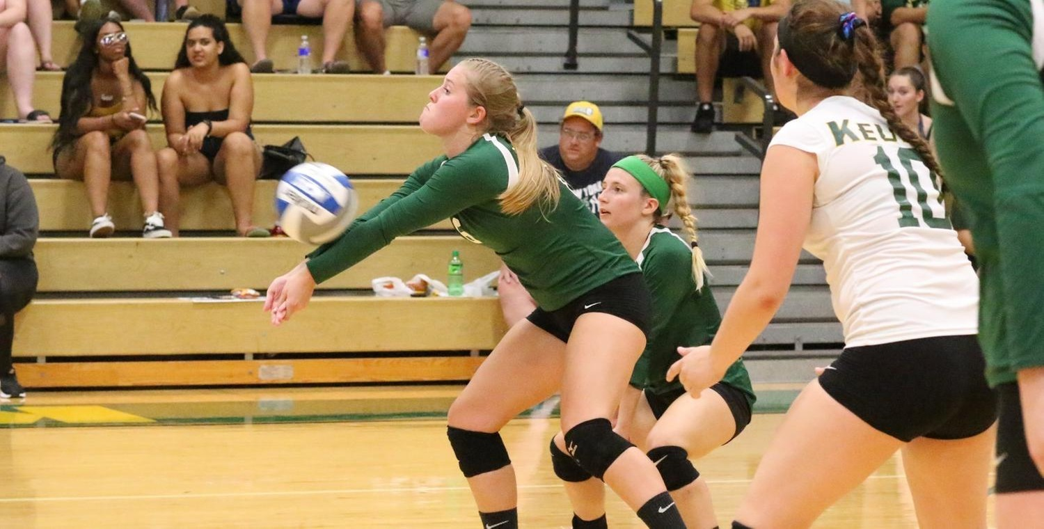 Senior Kayla Brown (6) had six digs for the Wolves on Wednesday -- Photo by Ed Webber