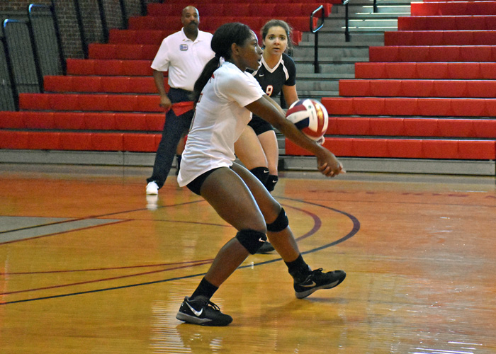 Bria Rochelle recorded 12 kills and 19 digs in a pair of conference matches on Saturday.