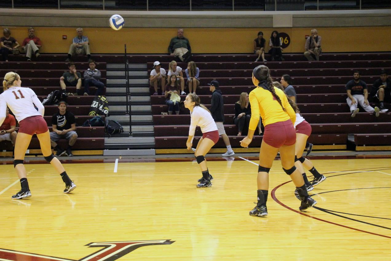 calvin college volleyball Many of these tools would have a huge impact on the calvin college volleyball program help coach warners bring these tools to calvin volleyball.