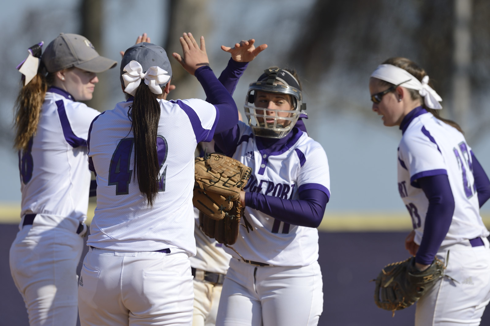 Purple Knights Drop 2017 Home-Opening Softball Doubleheader Versus NYIT