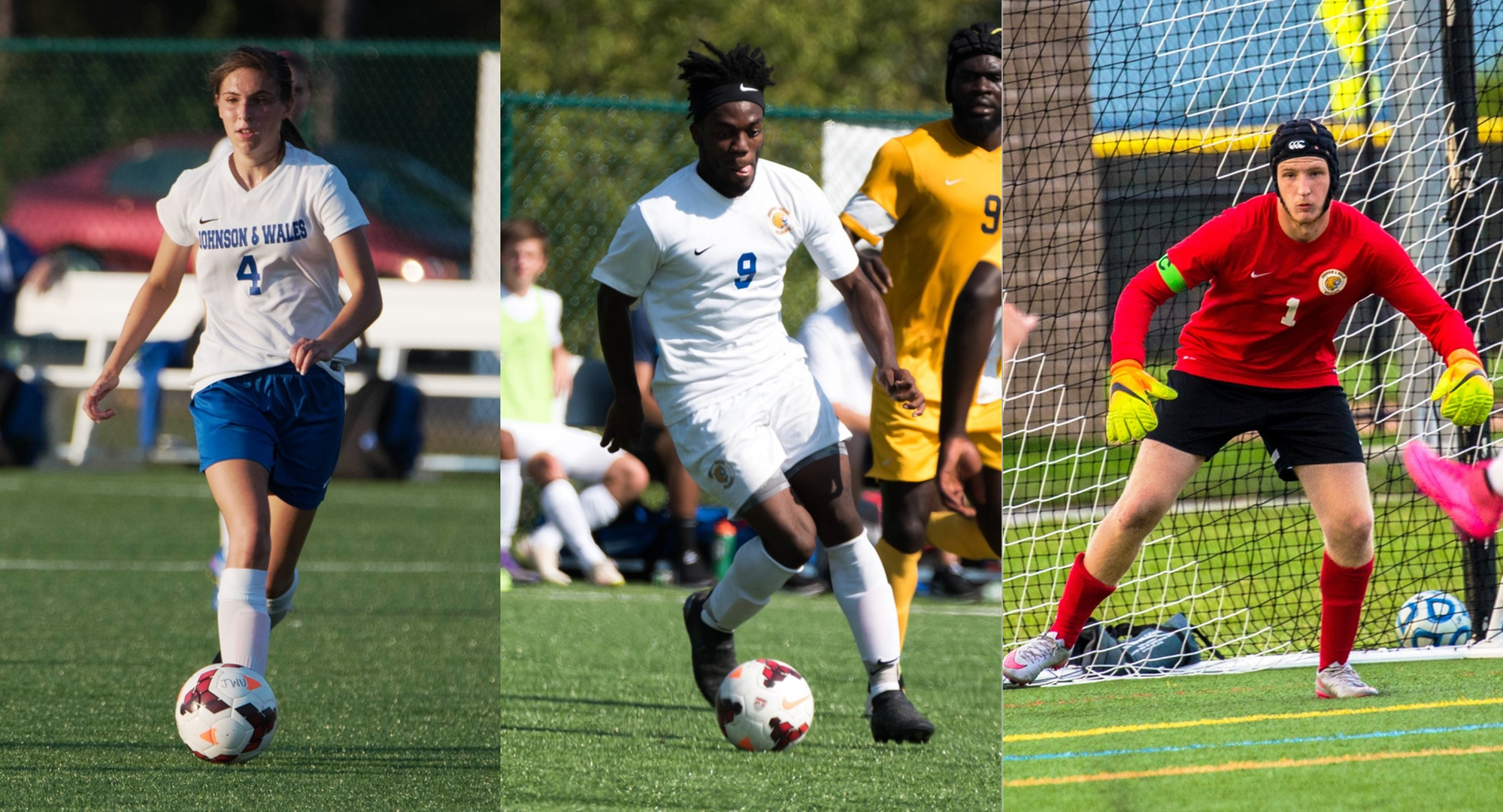 Trio of Wildcats Selected as USCAA National Players of the Week
