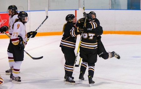 Mounties give up three first period goals, fall to Dal