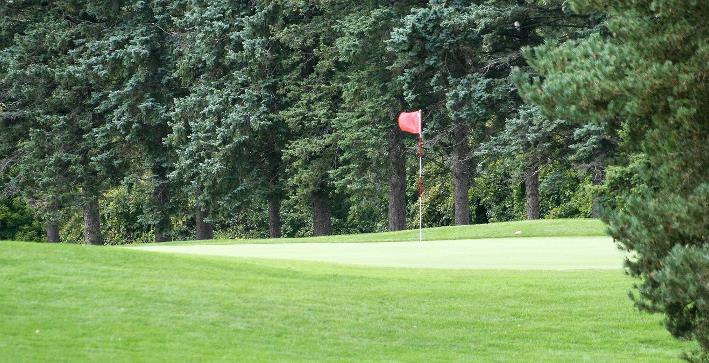 Men's Golf competes at Naperville Collegiate Invitational
