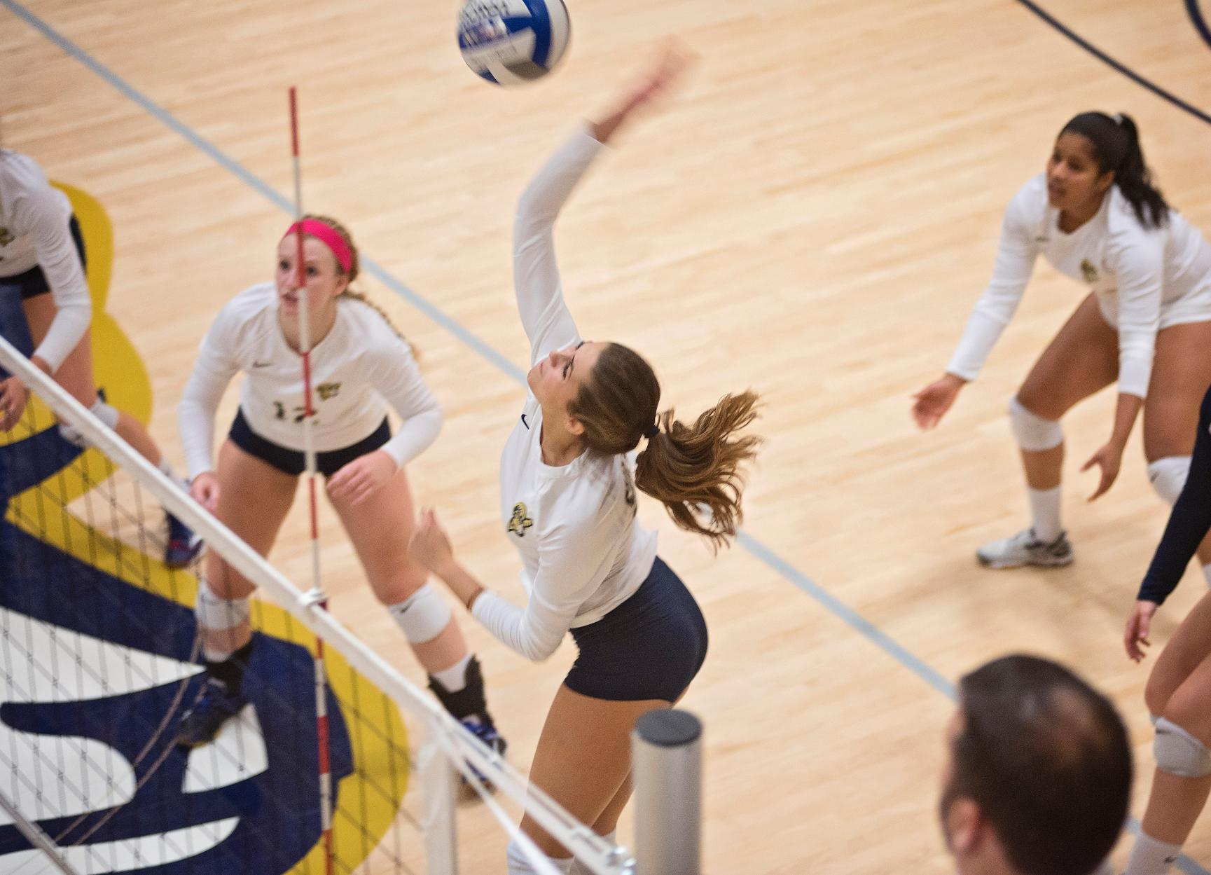 Volleyball Sweeps Albertus Magnus