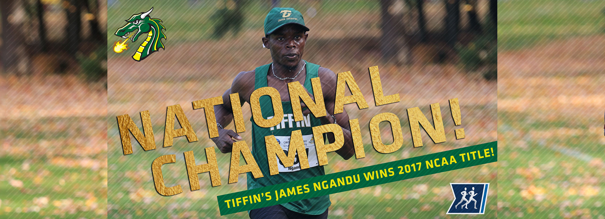 Tiffin's Ngandu Captures 2017 NCAA Division II Men's Cross Country National Championship