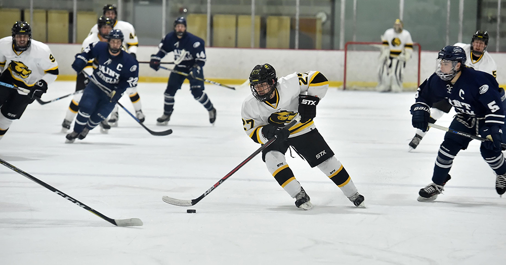 Nor'Easters Storm Past Hockey