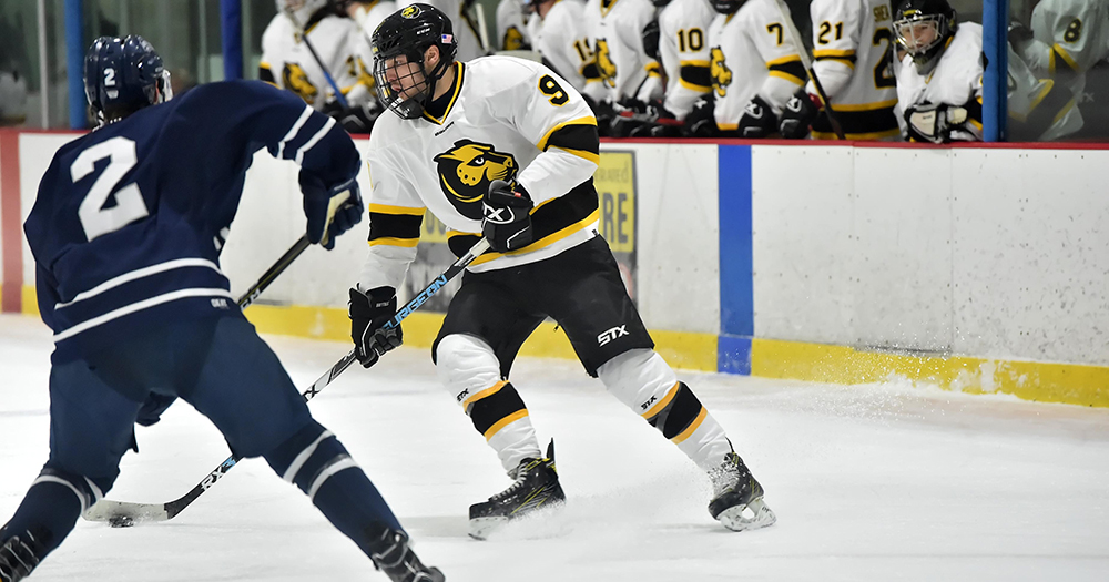 Hockey Suffers Setback at UMass Boston