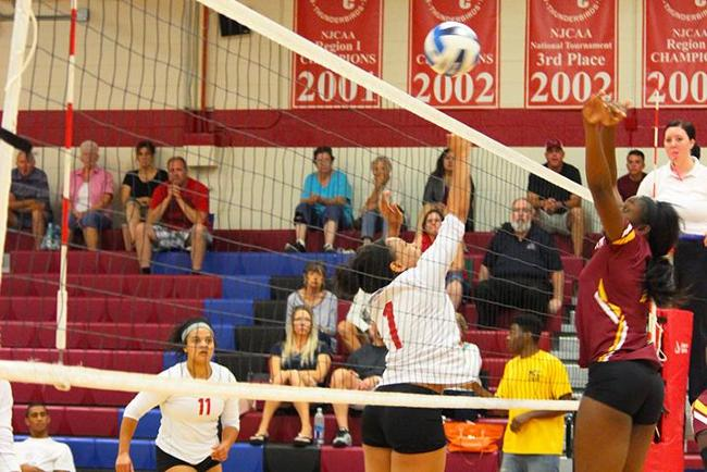 #14 Matadors Too Much for #17 Mesa in 3-0 Sweep