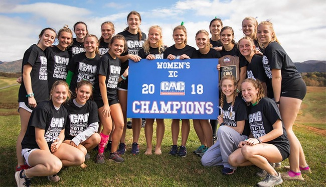 York Picked Unanimously Atop CAC Women's Cross Country Preseason Poll