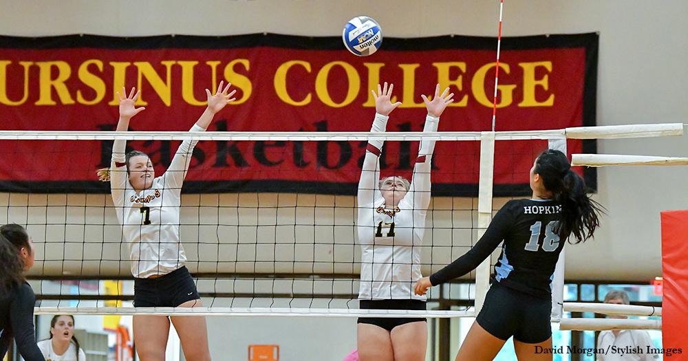 Volleyball Rallies Past Albright