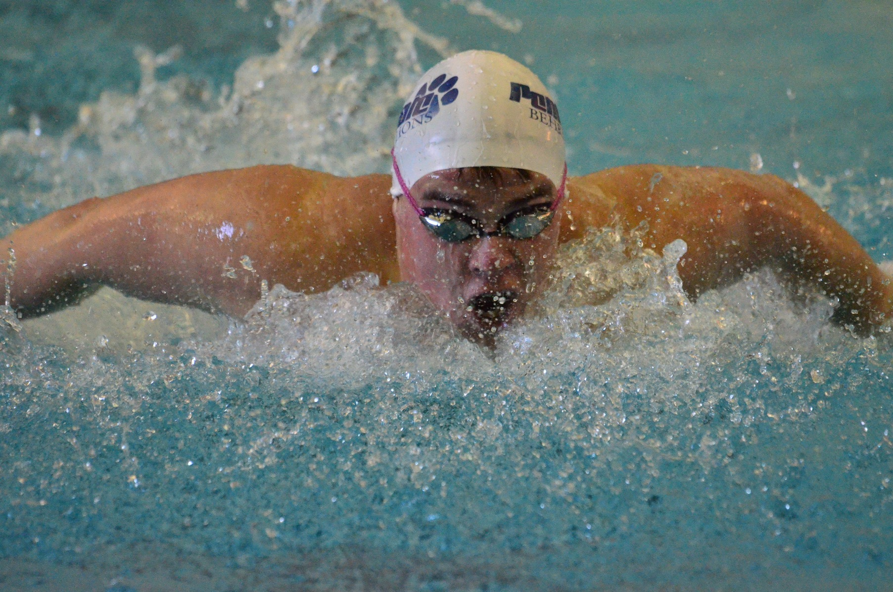 Men's Swimming and Diving Competes at Grove City F.C.