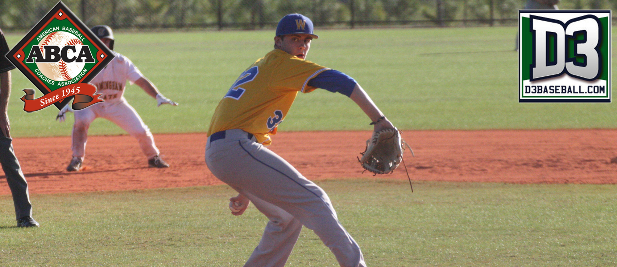 Bob Hamel Earns Third Team All-Region Honors from D3baseball.com & ABCA/Rawlings