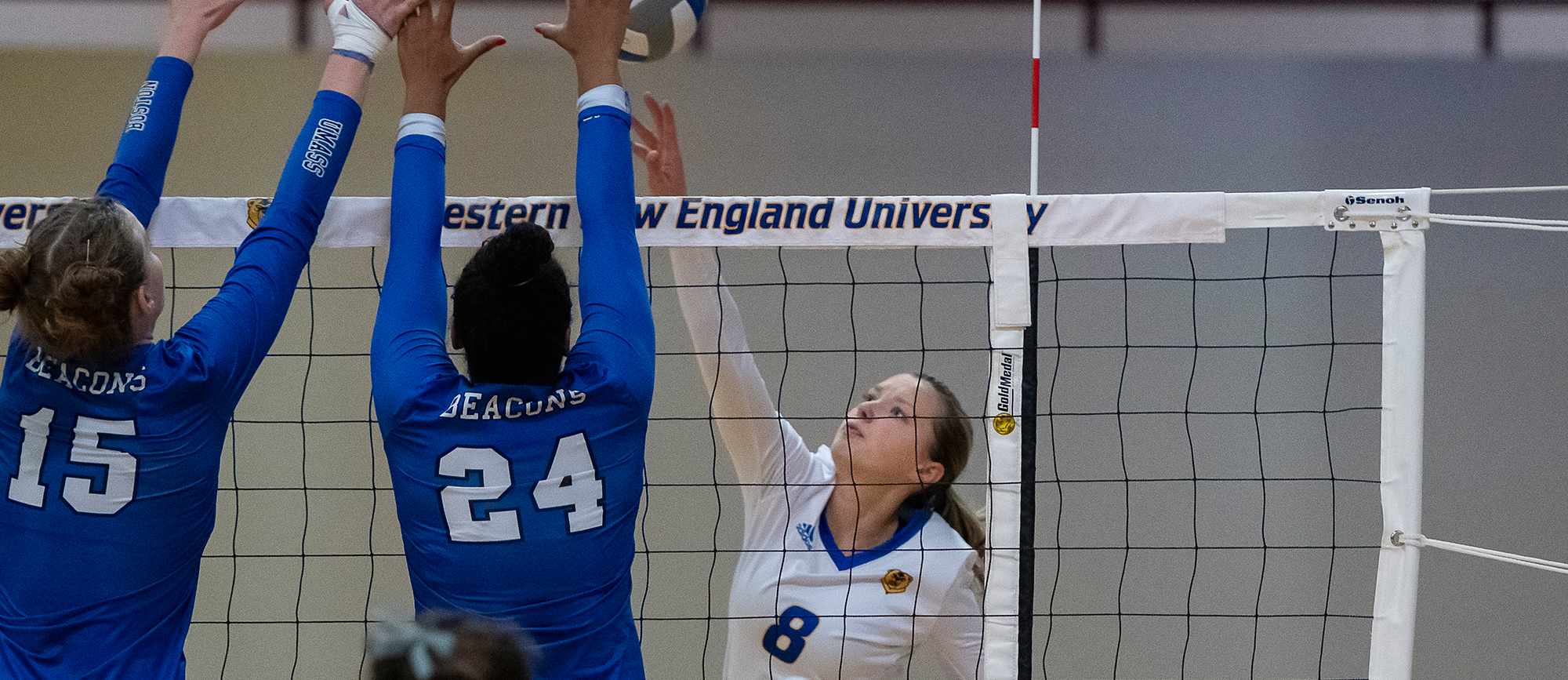 Ashley Matthews recorded a team-high 12 kills in Western New England's 3-1 loss to Wentworth on Wednesday. (Photo by Ben Barnhart)