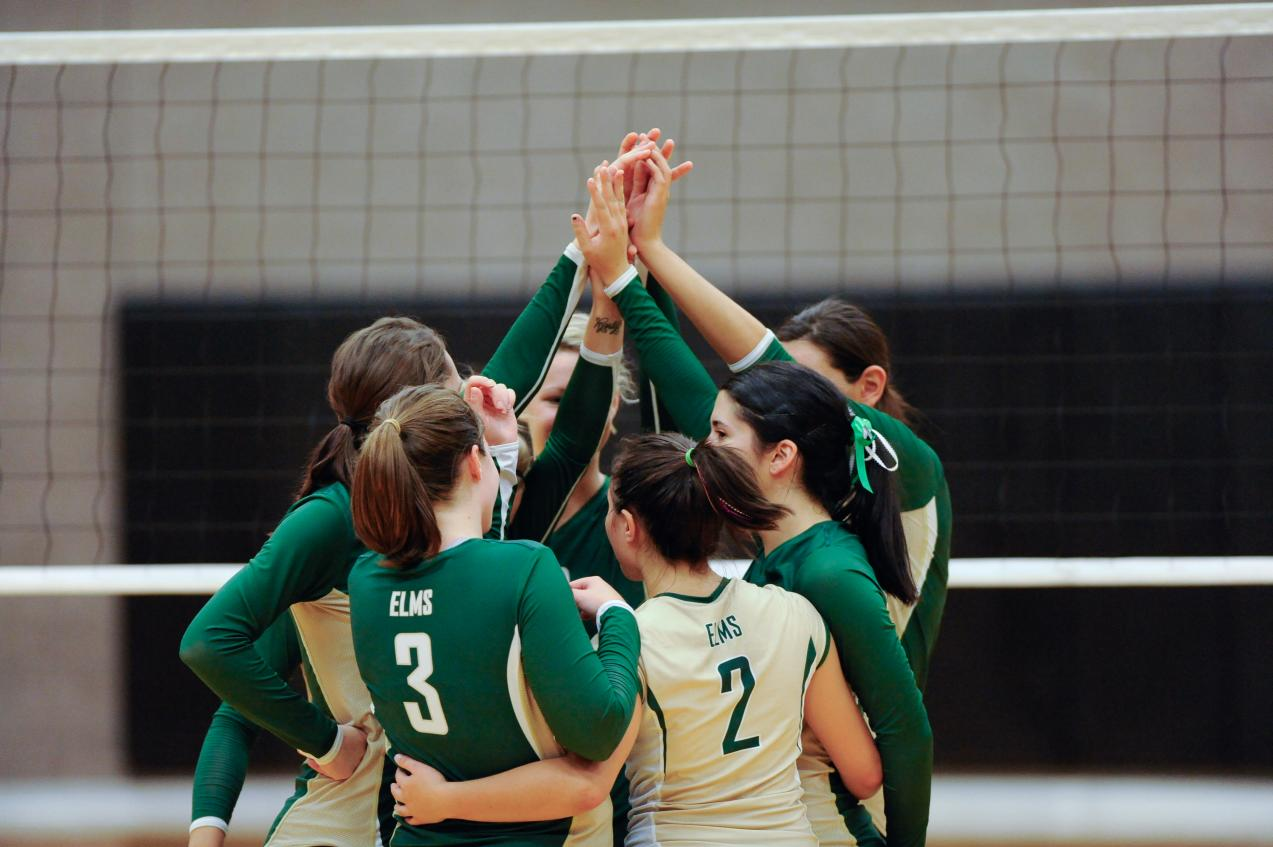 Women's Volleyball Outlasted by Regis College, 3-1