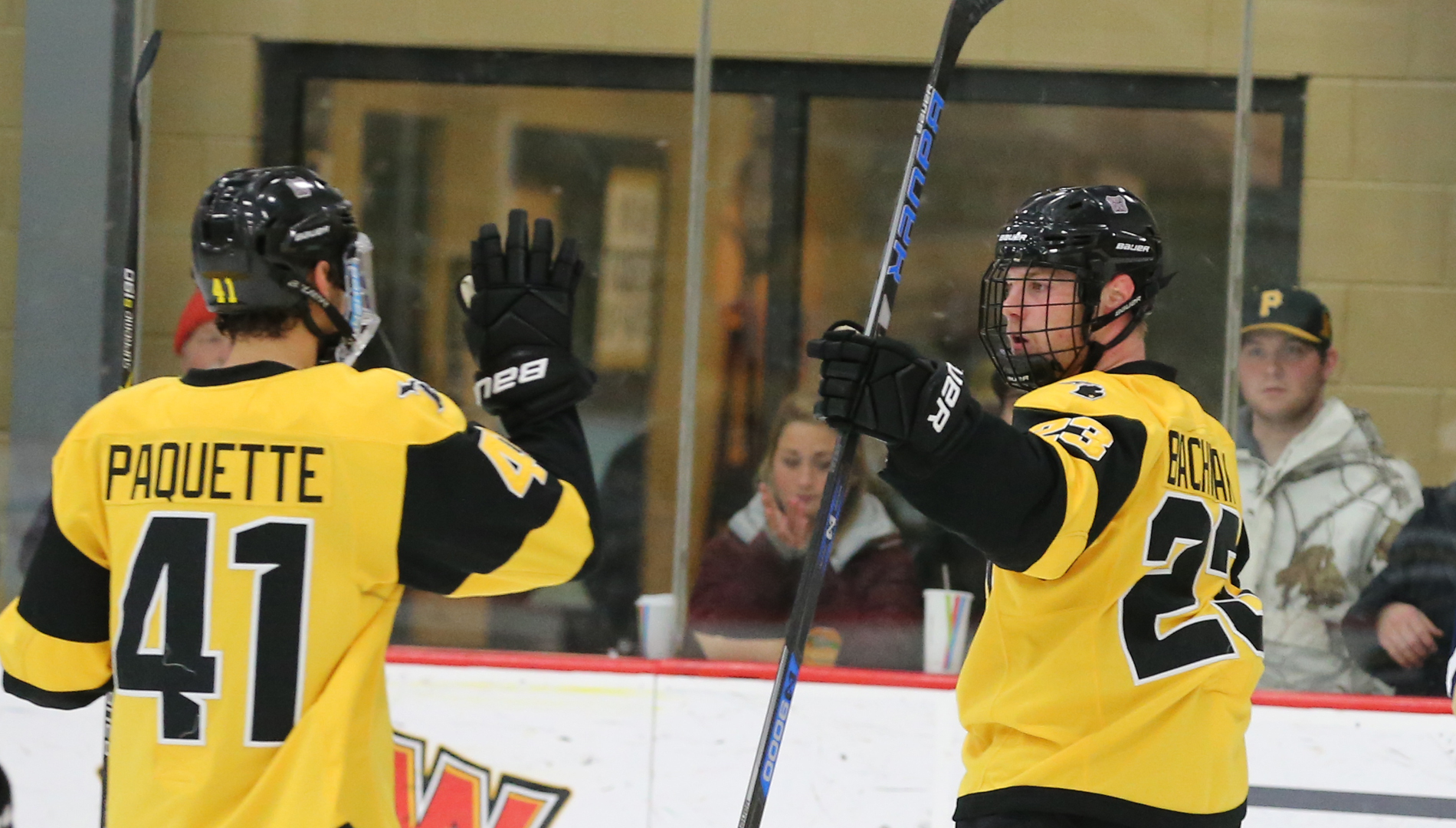 Vincent Paquette and Brian Bachnak celebrate a Bulldogs goal earlier this season. (Action photo by Mike Dickie)