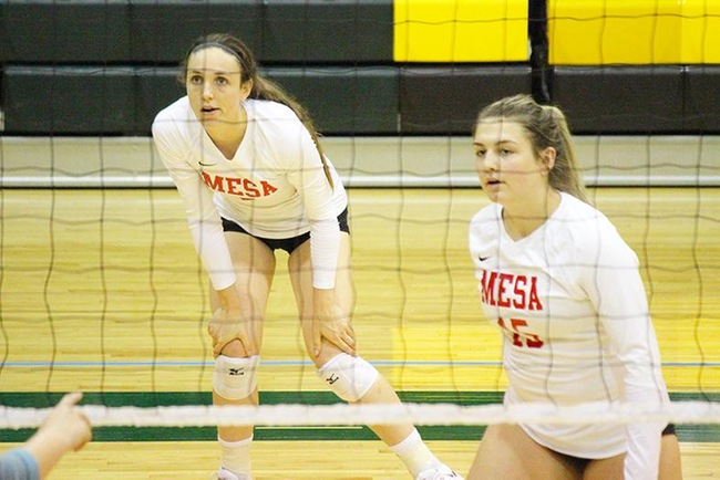 #11 Mesa Volleyball Wins in 3 Set Sweep at Phoenix College
