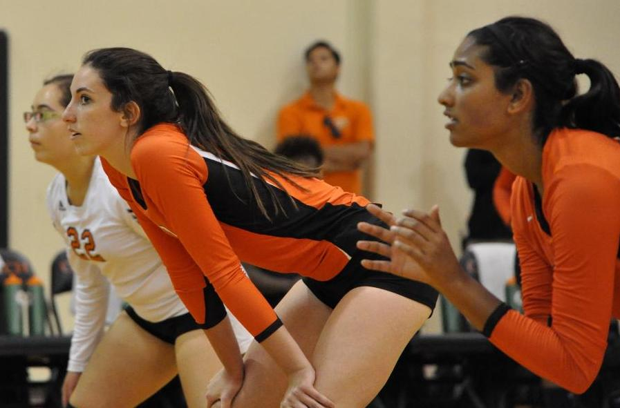 Jamshidi Paces Volleyball at Antelope Valley