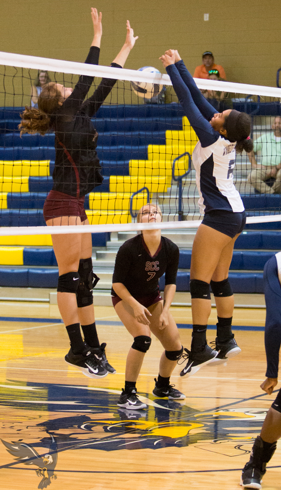 Volleyball Welcomes Pitt CC & Walters State