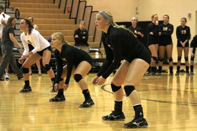 Volleyball Picked Fifth in GLIAC South Division