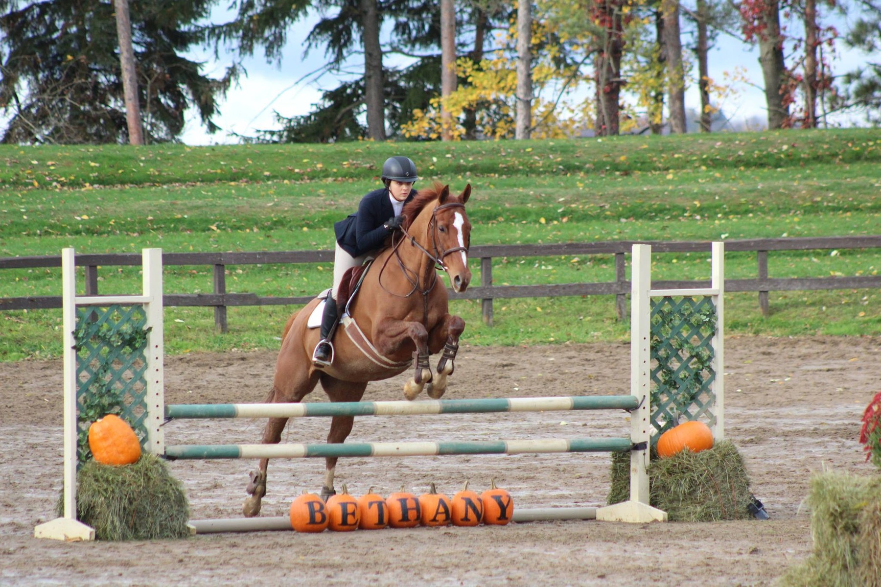 Bethany College to Host Horse Shows