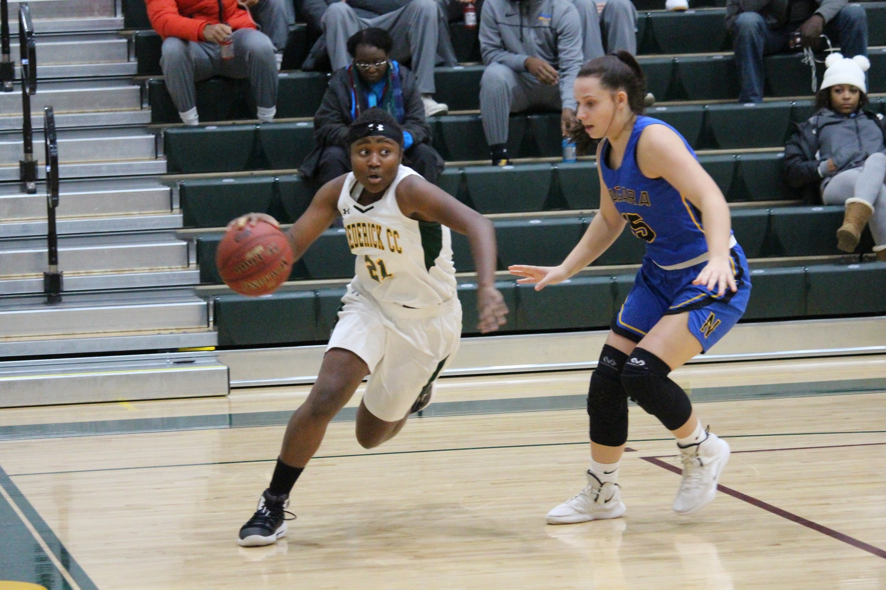 Women's Basketball Falls to #9 Niagara County Community College